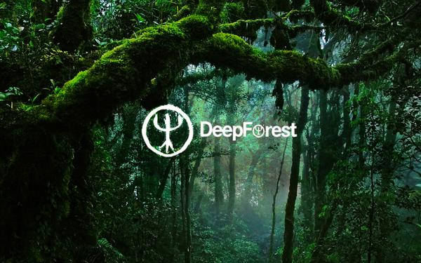 Беглика Фест 2016: Дружно усилие със звученето на DEEP FOREST