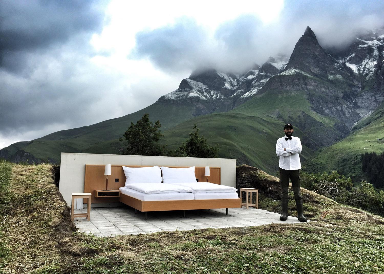 Стая с изглед