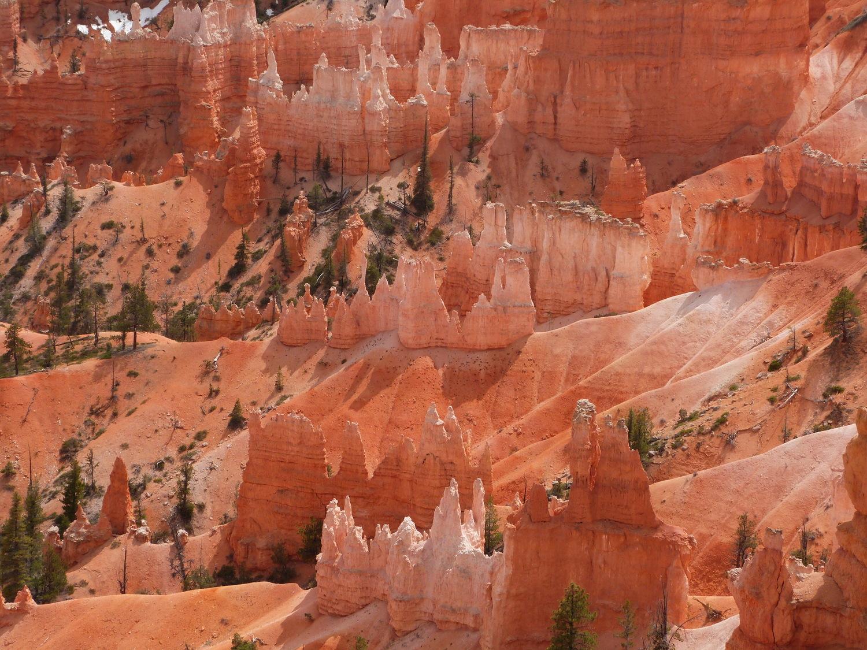 Bryce Canyon National Park, Utah; credit: Stefan Hadjianastassov