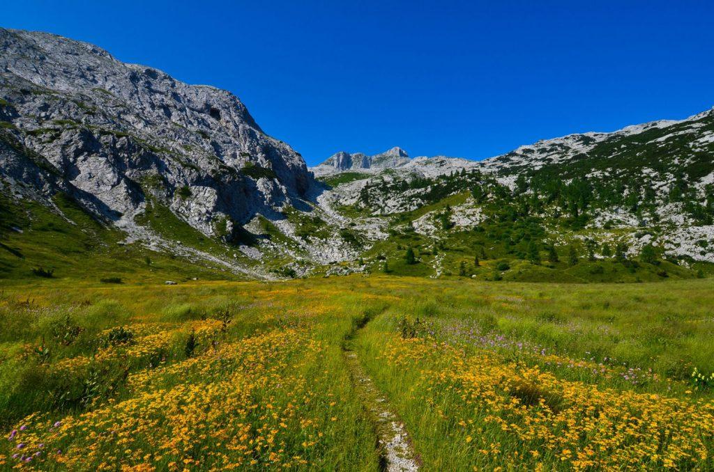Slovenian Mountain Hiking Trail