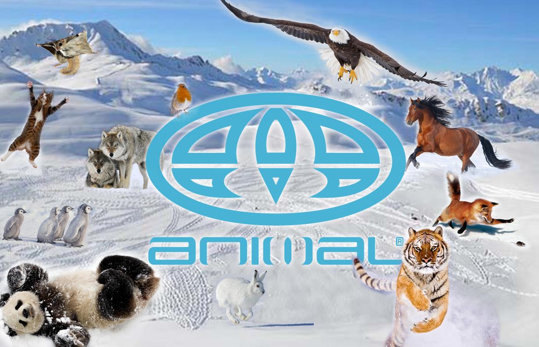 Animal Game