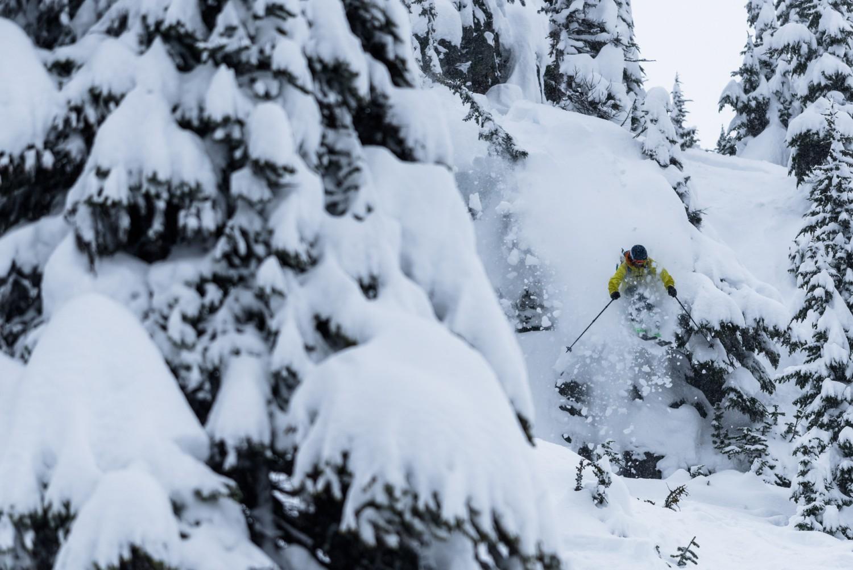 Backcountri Ski
