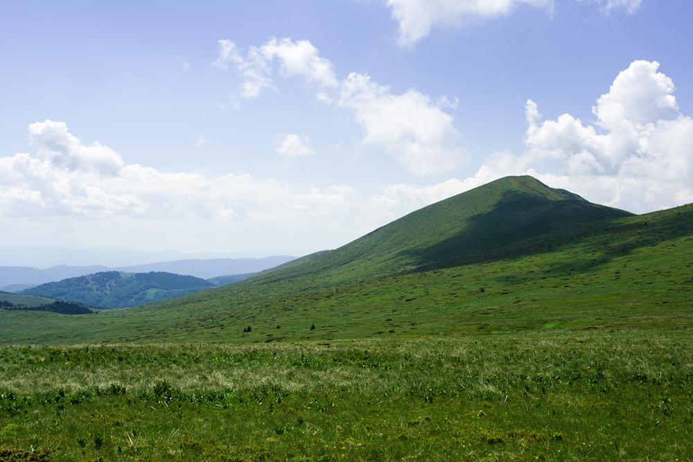 връх Ком