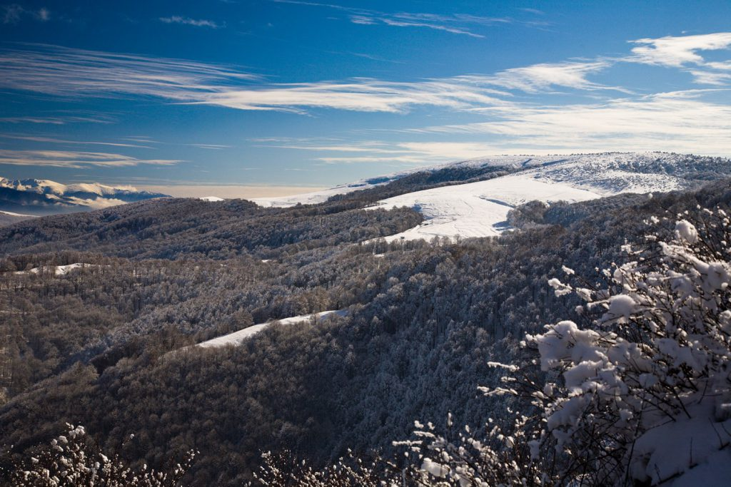 Малешевска планина