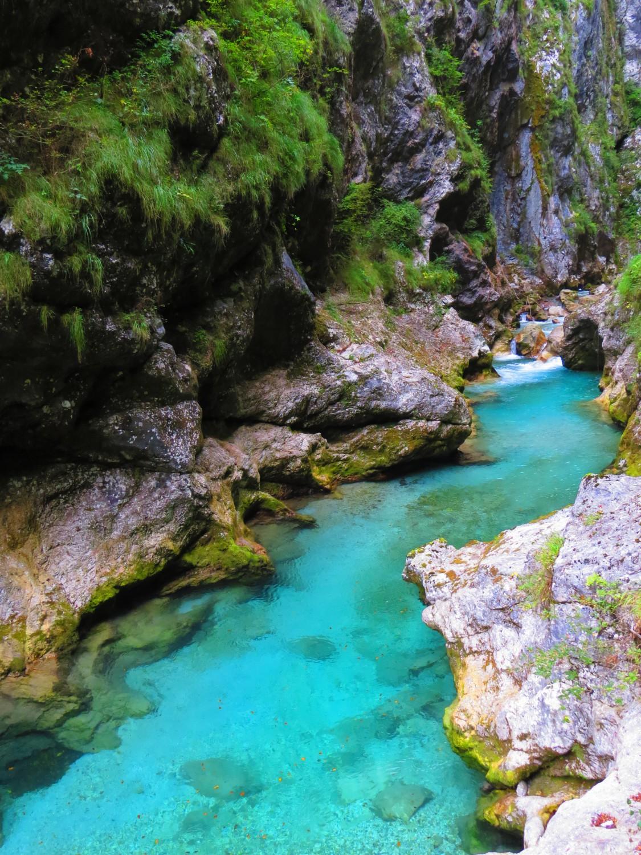 река Толминка снимка: Ира Кюрпанова