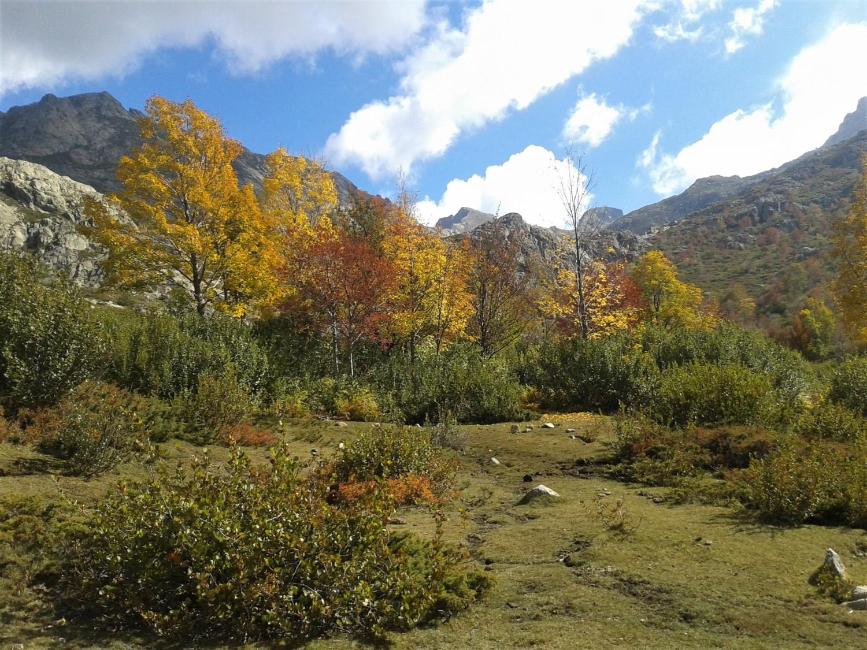 Монте Ротондо, Корсика