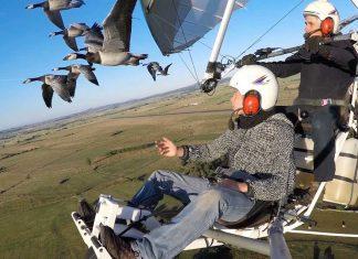 Да летиш заедно с птиците
