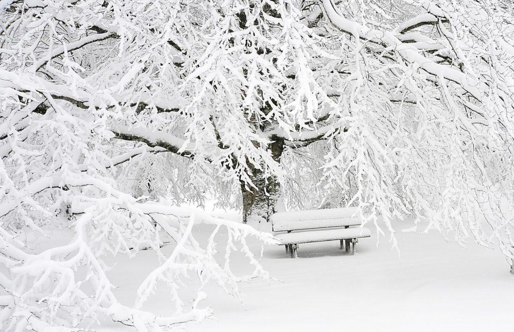 Сняг, природа