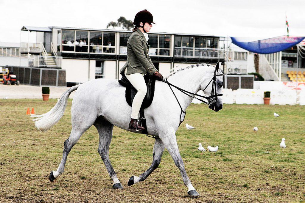 Конна езда