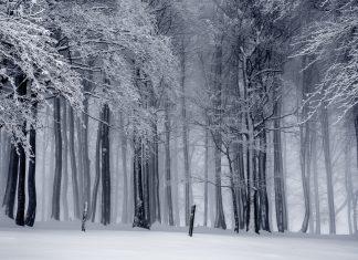 Сняг, гора