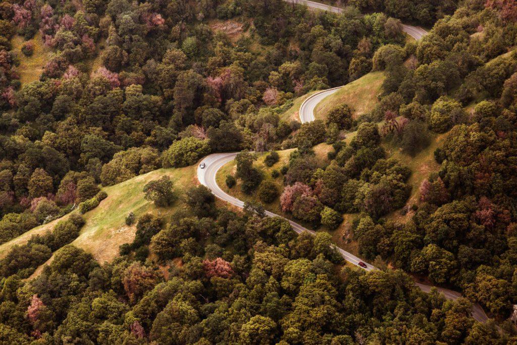 Кола, път, гора