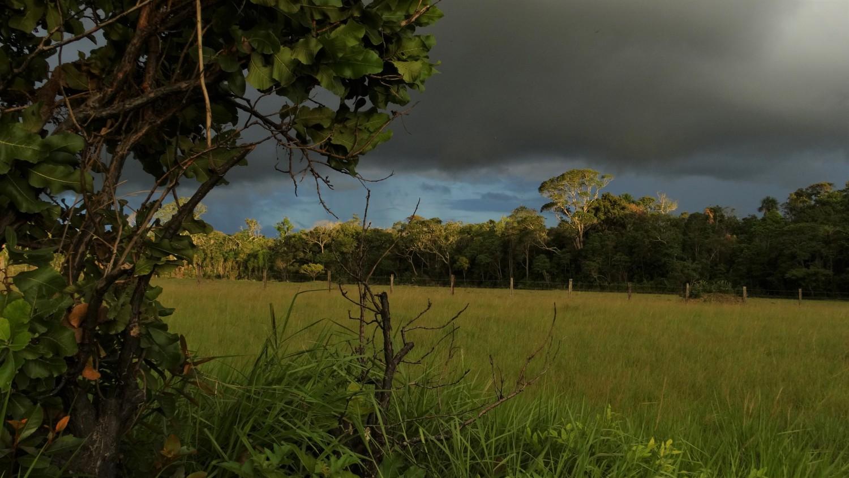 SoAVDNETUROUS: джунгли, индианци и досадни папагали