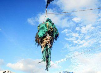 Ocean Cleanup / източник FORBS