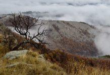 Снимка: Христо Узунов
