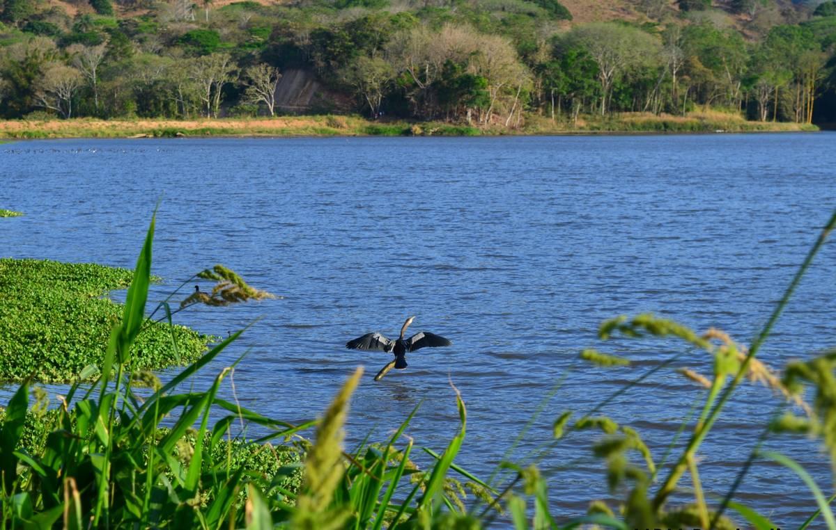 Бургаско езеро