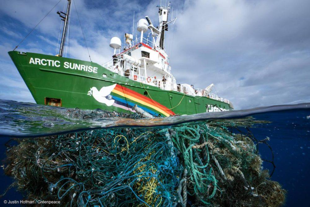 Justin Hofman / Greenpeace